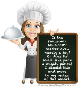 Review of the Panasonic NB-G110P Toaster Oven